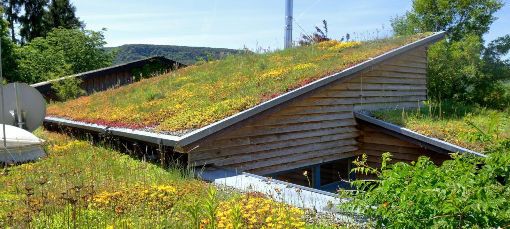 Green Roofing Benefits - SPS Roofing Ltd