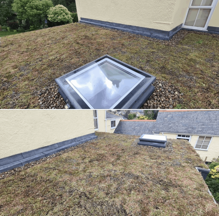 Green Roofs Exeter & Devon - SPS Roofing Ltd